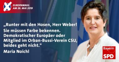 Maria Noichl, MdEP - seit 2014 Mitglied des Europäischen Parlaments und SPD-Kandidatin für Oberbayern bei der Europawahl am 26. Mai 2019